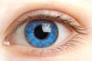 The Importance of Regular Eye Tests